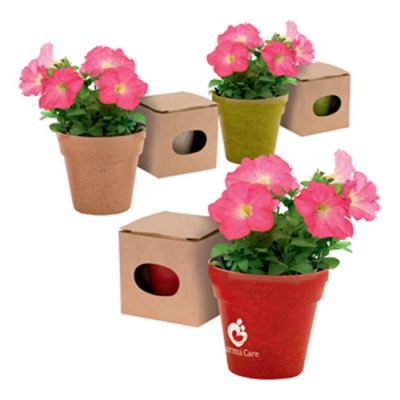 Image of Plant Pot